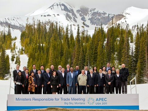 an introduction to the history of apec History of asean establishment the association of southeast asian nations, or asean, was established on 8 august 1967 in bangkok, thailand,.